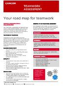 teamwork assessment datasheet